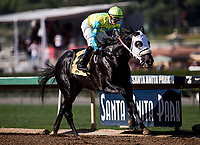 ARCADIA, CA - FEBRUARY 03: Lombo #4, ridden by Flavien Prat wins the Robert B. Lewis Stakes at Santa Anita Park on February 3, 2018 in Arcadia, California. (Photo by Alex Evers/Eclipse Sportswire/Getty Images)