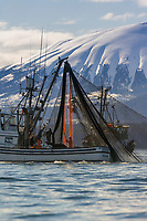 Cape purse seining commercial fishing vessel Ayakulik participates in the first 2006 Sitka Sac Roe Herring fishery opener on the north side of Middle island in Sitka Sound, March 2006. Mount Edgecumbe in the distance.