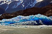 The vivid blue of Grey Glacier in Torres del Paine provides a surreal landscape.