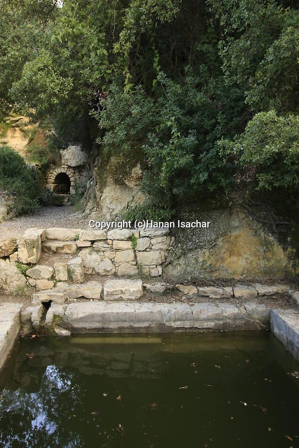 Israel, Jerusalem Mountains, Ein Tayasim in Nahal Tayasim