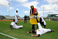 Bradenton Marauders mascot helps players including Jose Osuna stretch before a game against the Fort Myers Miracle at McKechnie Field on April 7, 2013 in Bradenton, Florida.  Fort Myers defeated Bradenton 9-8 in ten innings.  (Mike Janes/Four Seam Images)