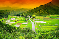 Hanalei River, Taro ponds and wetland, Hanalei National Wildlife Refuge, Kauai, Hawaii, Pacific Ocean