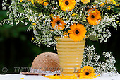 Carl, FLOWERS, photos, SWLA3966-1,#f# Blumen, Natur, flores, naturaleza