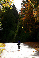 Joshua Behr riding Islabike Benin 24 ..virginia Water Surrey October 2008..pic copyright Steve Behr / Stockfile