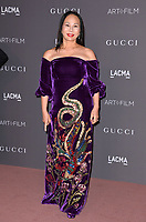 Eva Chow at the 2017 LACMA Art+Film Gala at the Los Angeles County Museum of Art, Los Angeles, USA 04 Nov. 2017<br /> Picture: Paul Smith/Featureflash/SilverHub 0208 004 5359 sales@silverhubmedia.com