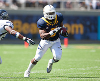 September 1, 2012: California's Maurice Harris runs down the field during a game against Nevada at Memorial Stadium, Berkeley, Ca   Nevada defeated California 31 - 24
