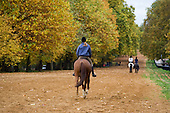 Horse riders in Hyde Park, London.