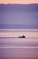 Europe/France/Bretagne/29/Finistère/Douarnenez: la baie de Douarnenez bateau en pêche à l'aube