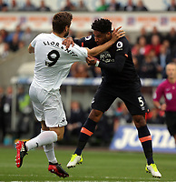 (L-R) Fernando Llorente of Swansea City clashes against Ashley Williams of Everton during the Premier League match between Swansea City and Everton at The Liberty Stadium, Swansea, Wales, UK. Saturday 06 May 2017