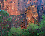 Zion National Park, UT: The Pulpit surrounded by desert varnished Navajo sandstone in the Temple of Sinawava