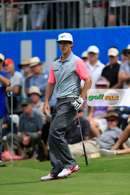 Thorbjorn Olesen (DEN) on the 18th green during Round 3 of the ISPS HANDA Perth International at the Lake Karrinyup Country Club on Saturday 25th October 2014.<br /> Picture:  Thos Caffrey / www.golffile.ie