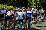 The bunch on La Redoute Stage 4 Hotel Verviers - La Gileppe (Jalhay), België, Ster ZLM Toer, Aywalle Belgium, 21th June 2014, Photo by Thomas van Bracht / Peloton Photos