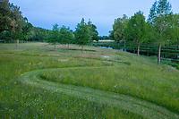 France, Maine-et-Loire (49), Brissac-Quincé, château de Brissac, jeu d'allées dans la prairie et rond planté de chênes rouge d'Amérique