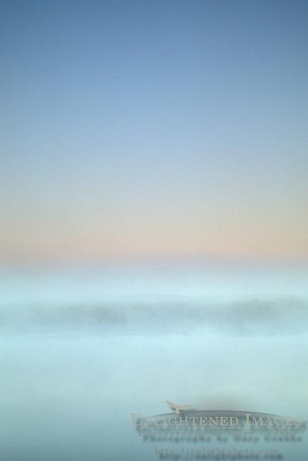 Morning mist ground fog at dawn over Middle River, Jones Tract, San Joaquin delta, near Stockton, California