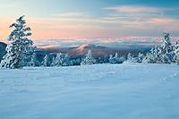 Winter's evening light, Roan Highlands