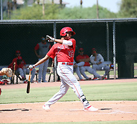 Arizona Instructional League (AIL) 2019