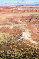 The Painted Desert in the Petrified Forest National Park on Route 66 in Arizona.