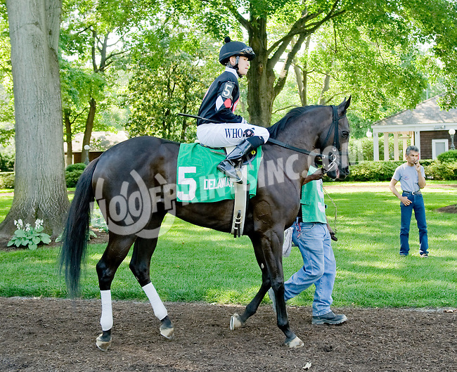Defy Gravity before The Beautiful Day Stakes at Delaware Park on 5/31/12