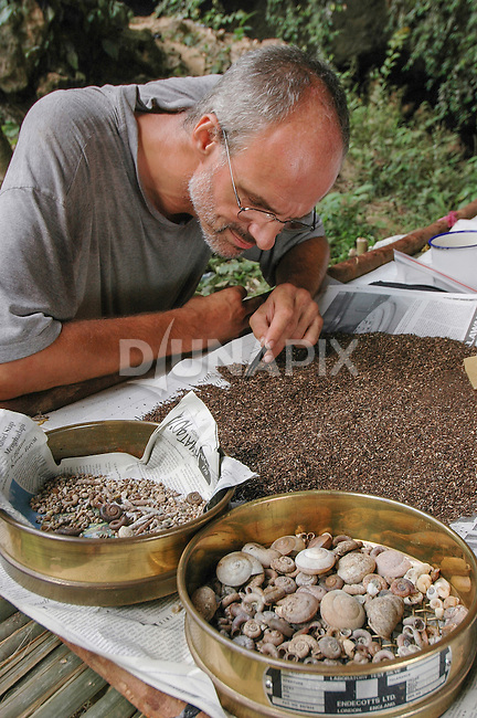 Malacologist Jaap Vermeulen sifts soli samples for snail shells on the Sangkulrang Rapid Ecological Assessment, Snails revealed much about the current and historical ecology of the region.