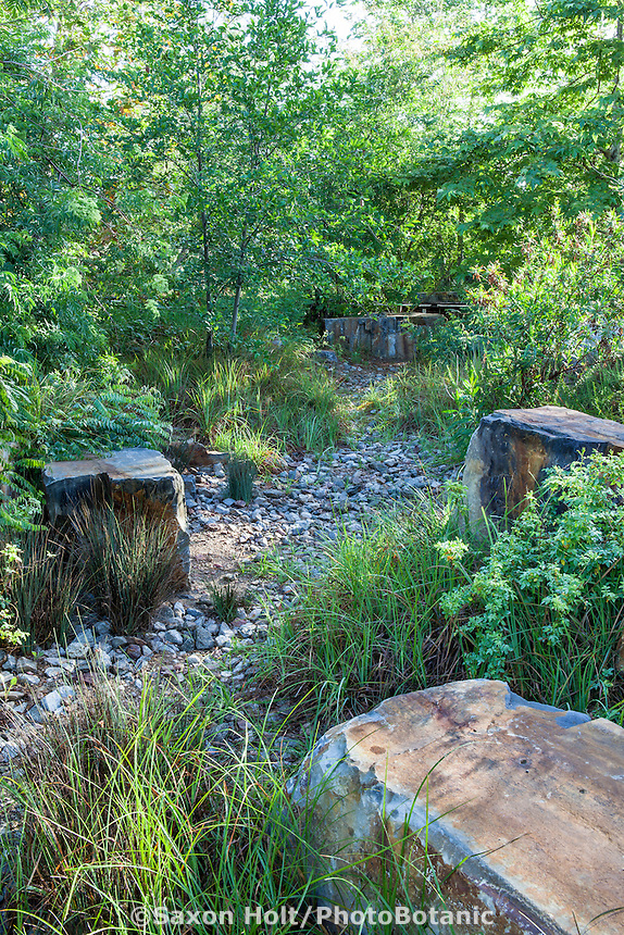 Dry stream rocky swale rain garden in habitat garden for rain to percolate into soil at Los Angeles Natural History Museum