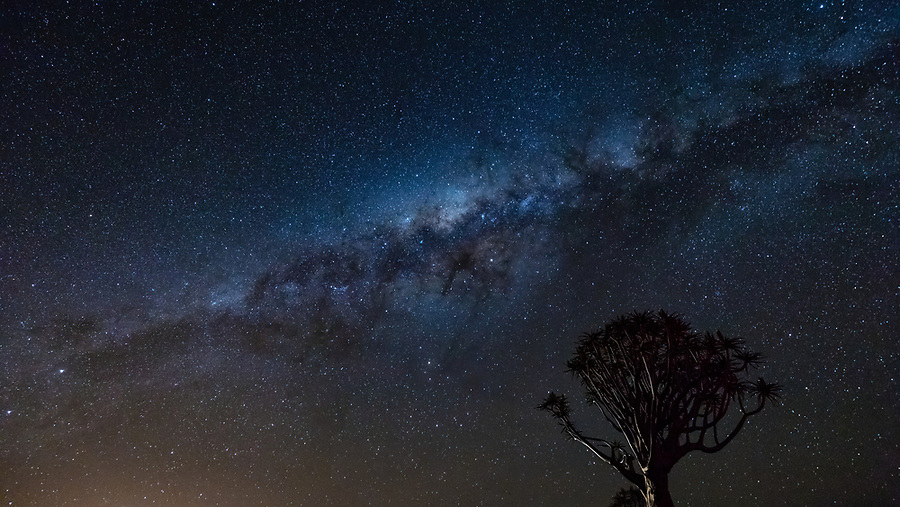 A Quiver Tree And The Milky Way.