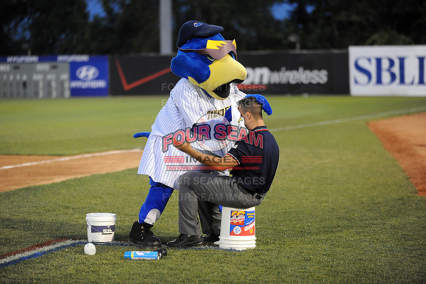 July 15, 2009:  Trenton Mascot Boomer during the 2009 Eastern League All-Star game at Mercer County Waterfront Park in Trenton, NJ.  Photo By David Schofield/Four Seam Images