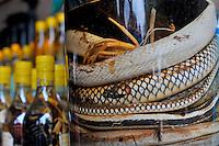 Snakes in snake-flavoured alcohol / liquor bottles for sale, Hanoi, Vietnam