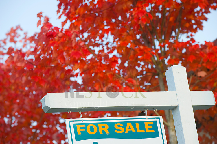 'For Sale' Sign in Autumn