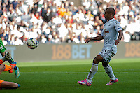 Saturday 4th  October 2014 Pictured: Wayne Routledge scores for the Swans <br /> Re: Barclays Premier League Swansea City v Newcastle United at the Liberty Stadium, Swansea, Wales,UK