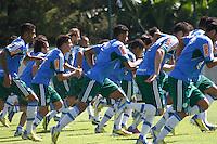 SAO PAULO,SP, 20 DE FEVEREIRO 2013 - TREINO PALMEIRAS - Jogadores do Palmeiras durante treino na Academia de Futebol, zona oeste da capital, na manhã  desta quarta-feira(20), a equipe se prepara para 9ª rodada do paulistão - FOTO: LOLA OLIVEIRA//BRAZIL PHOTO PRESS