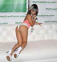 Miss Vietnam at AVN Expo, <br /> Hard Rock Hotel, <br /> Las Vegas, NV, Friday January 17, 2014.