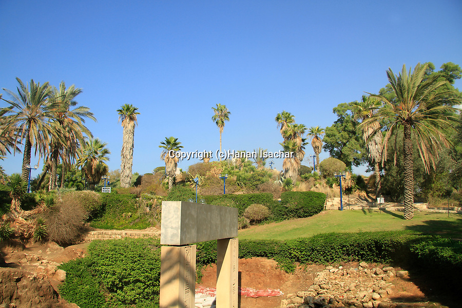 Israel, Tel Aviv-Yafo, Tel Yafo excavations in Old Jaffa, Gan Hapisga is in the background