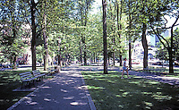 Portland: The Park Blocks--looking north on Park Ave. SW from Portland State University (set aside as park in 1852)  The trees are elms.  Photo '86.