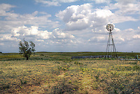 Windmill and cow pasture on Route 66 east of Shamrock Texas.