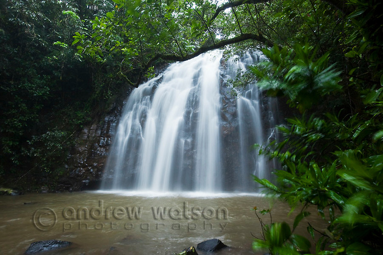 Elinjaa Falls - part of the Waterfalls Circuit on the Atherton Tablelands.  Millaa Millaa, Queensland, Australia