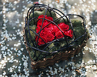 A heartshaped wicker basket planted with mossy foliage and red roses.