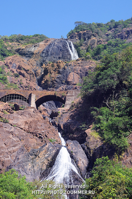 Dudhsagar waterfall in jungle forest in India (GOA, Karnataka)
