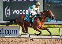 09-15-18 Woodbine Stakes