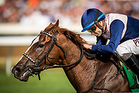 LEXINGTON, KY - OCTOBER 07: Zippesa #5 with Joe Bravo aboard wins the First Lady Stakes at Keeneland Race Course on October 07, 2017 in Lexington, Kentucky. (Photo by Alex Evers/Eclipse Sportswire/Getty Images)