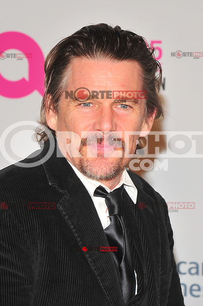 NEW YOKR, NY - NOVEMBER 7: Ethan Hawke at The Elton John AIDS Foundation's Annual Fall Gala at the Cathedral of St. John the Divine on November 7, 2017 in New York City. Credit:John Palmer/MediaPunch /NortePhoto.com