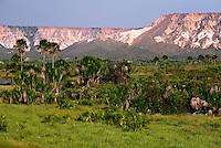 Parque Estadual do Jalapão. Tocantins. Foto de Caetano Barreira.