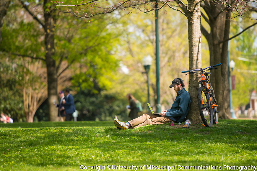 Senior Sims Cauthen taken advantage of sunny, dry weather to study in the Grove. Photo by Kevin Bain/University Communications Photography