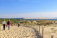 France, Gironde, Cote d'Argent, Parc naturel marin du bassin d'Arcachon (Arcachon Bay Marine Natural Park), Lege Cap Ferret, way to La Pointe Beach and the Dune du Pilat in background // France, Gironde (33), Côte d'Argent, Parc naturel marin du bassin d'Arcachon, Lège-Cap-Ferret, chemin d'accès à la  plage plage de la Pointe et dune du Pilat en arrière-plan