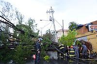 PIRACICABA, 21.07.2013 - CHUVA PIRACICABA - Forte chuva atinge a cidade de Piracicaba, com fortes rajadas de ventos derrubou algunas árvores na cidade do interior do Estado, neste domingo, 21. (Foto: Mauricio Bento / Brazil Photo Press).