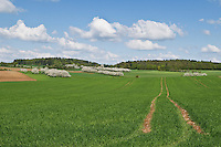 Spring farm fields, Franconia, Bavaria, Germany