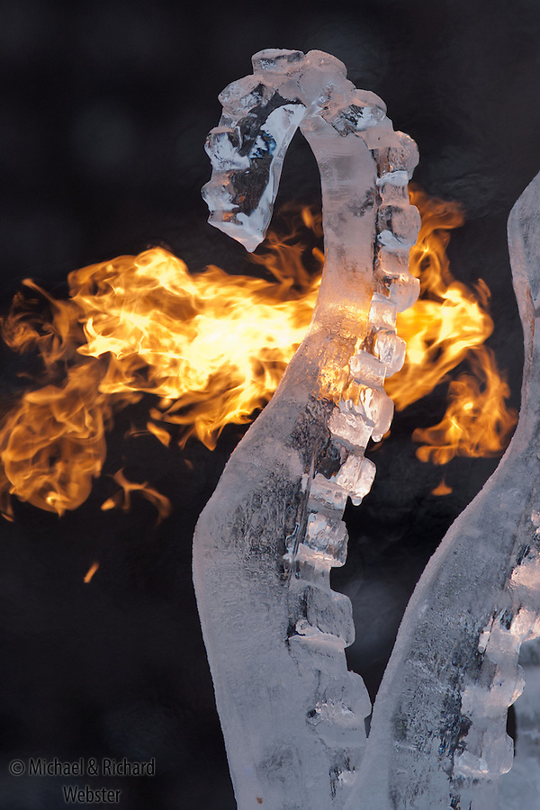The final touch to an ice carving is to flame it.  In an instant the opaque ice comes to life in perfect clarity.