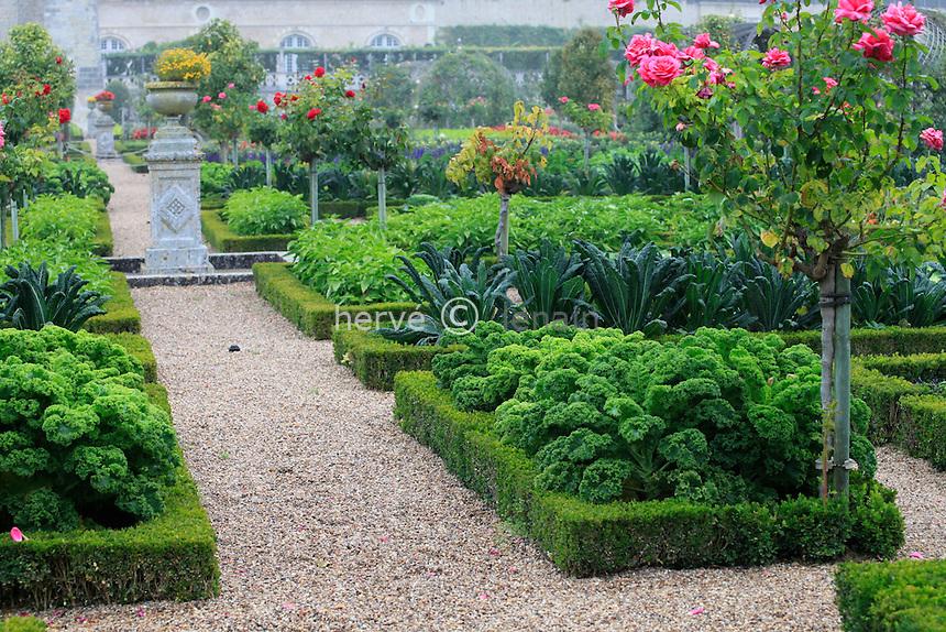 """France, Jardins du château de Villandry, dans le potager traité à la française // France, Gardens of the castle of Villandry, the kitchen garden treated like a """"jardin à la française""""."""