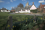 Famous picturesque pink thatched almshouse cottages and St. Mary's Church, from the village green, Cavendish, Suffolk, England.