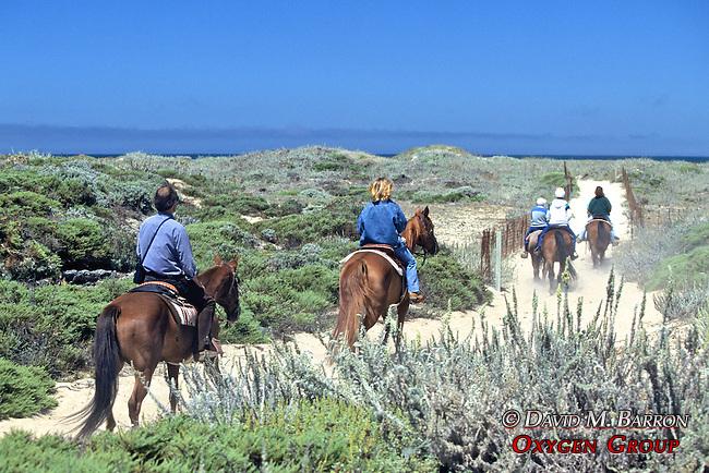 Riding Horses On Beach