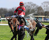 14h April 2018, Aintree Racecourse, Liverpool, England; The 2018 Grand National horse racing festival sponsored by Randox Health, day 3; Fourth placed horse Debece ridden by Alan Johns gets a cool down after The Gaskells Handicap Hurdle